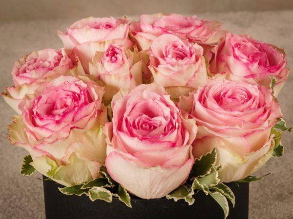 Cappelliera media Rose Rosa, rose fresche a domicilio in una scatola fatta a mano con marchio Frida's