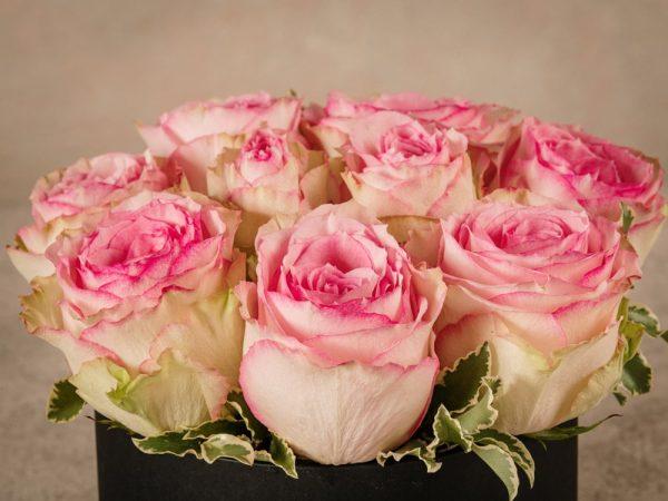 Cappelliera media Rose Rosa, rose fresche di altissima qualità Frida's