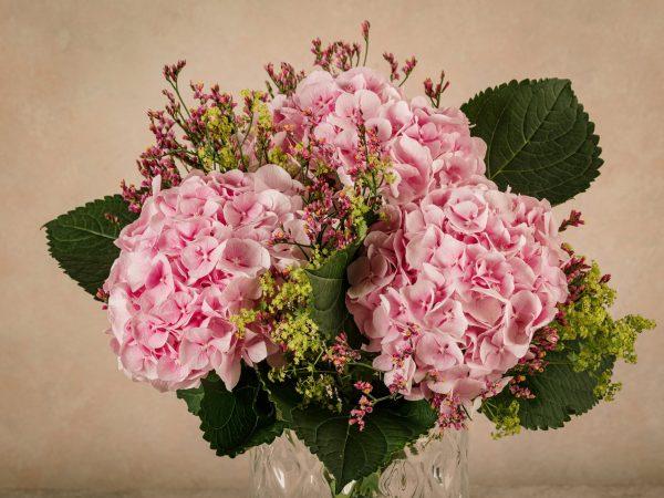 Bouquet Nastro Rosa, Frida's al fianco di LILT